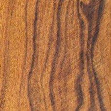 Аризонское железное дерево