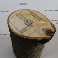 Способы распила древесины - ликбез от Лесопилки