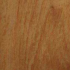 Фактура древесины цедера