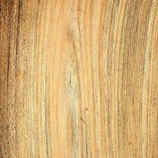 Фактура древесины селтис