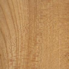 Фактура древесины карагача (вяза)