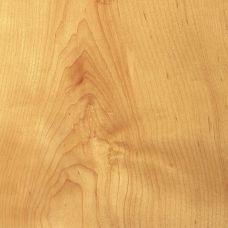 Фактура древесины американского клена