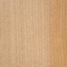 Фактура древесины европейского клена