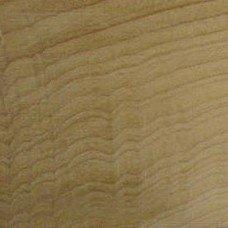 Фактура древесины магнолии