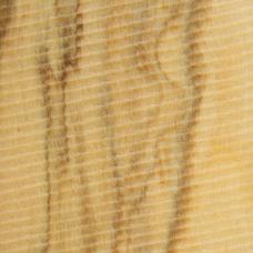 Фактура древесины оливы