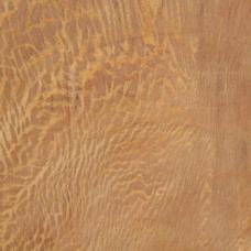 Фактура древесины платана