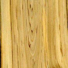 Фактура древесины рябины
