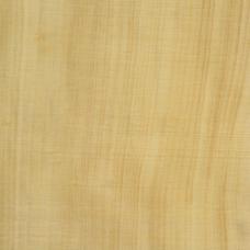 Фактура древесины самшита