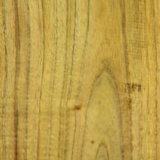 Фактура древесины скумпии