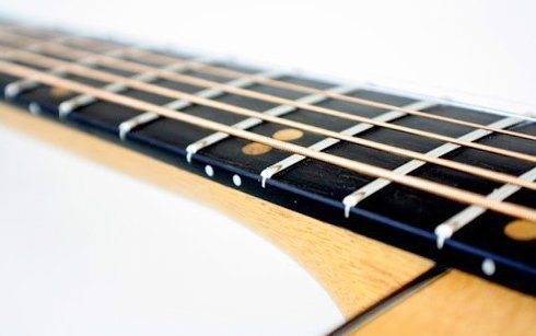 ладовые порожки на накладке на грифе гитары