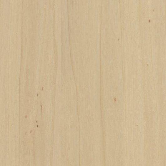текстура древесины тополя черного