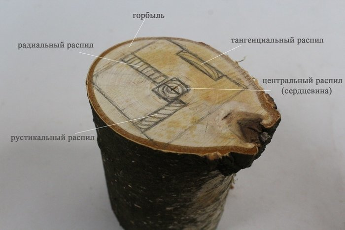 Виды распила древесины