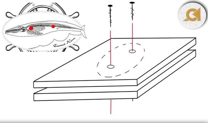 Схема вкручивания шурупов в фанеру